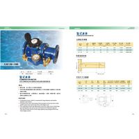 AMICO Combination water meter thumbnail image