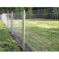Galvanized Wire Fence