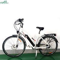 Electric Bike TDF04