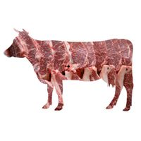 Beef thumbnail image