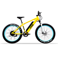 two wheel fat tire mountain snow electric bike / electric bicycle