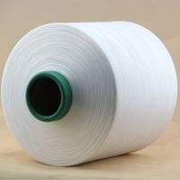 100% Polyester High Tensity DTY Yarn of 150D/96F NIM (SD RW AA GRADE)