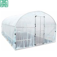 China Single Layer and Film Cover Material Customized Greenhouse thumbnail image
