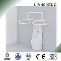 Toilet Stainless Steel Integrated Grab Bar