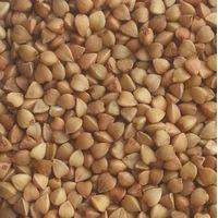 Roasted Buckwheat thumbnail image