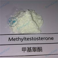 17-Methyltestosterone Raw powder CAS 58-18-4 thumbnail image