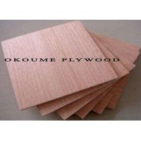 Plywood/Commercial Plywood/Okoume Plywood