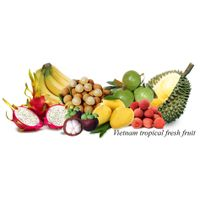 Sell Fresh Dragon Fruits/ Fresh tropical fruits thumbnail image