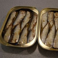 Canned food Canned Fish Canned Sardine/ Tuna/ Mackerel thumbnail image
