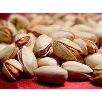 Long pistachio thumbnail image