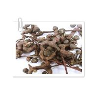 Korean Raisin extract powder