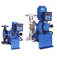 Cheonsei Metering Pump