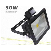 CE ROSH 50W COB LED outdoor flood light