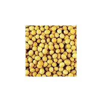 soybean isoflavone on sale