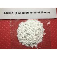 1-DHEA Powder White