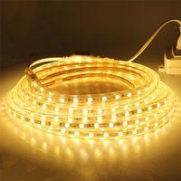 AC110-120V Flexible RGB LED Strip Lights 60 LEDs/M Waterproof AC110V/AC220V ruban led exterieur 5050 thumbnail image