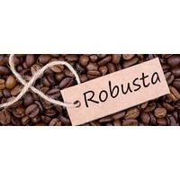 Robusta coffee beans for sale