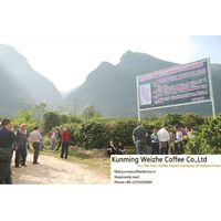you will like the coffee beans of Weizhe coffee thumbnail image