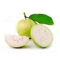 guavas thumbnail image