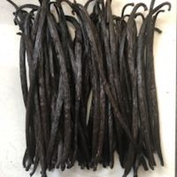 Vanilla Premium Beans thumbnail image