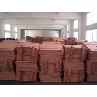 High purity copper cathodes,Copper Plate 99.99%