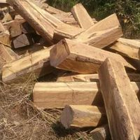 Semi Processed & Processed Logs For Sale