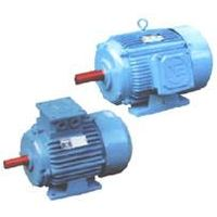 Y Series 3-Phase Induction Motor