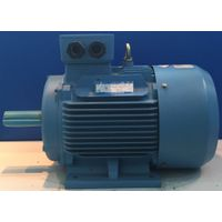 100hp 4 poles ac induction motor