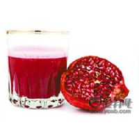 Sell Pomegranate Juice Concentrate