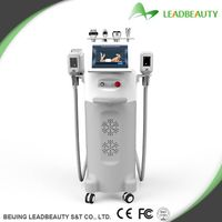 Vertical Cryolipolysis Slimming Machine , Weight Loss Zeltiq Coolsculpting Machine