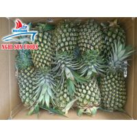Pineapple From Vietnam