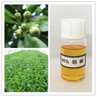 High Purity 95% Nicotine for Intermedite of Pesticide