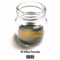 Water Atomization Ni 99.5% Spherical Powder for Powder Metallurgy Adds electric products