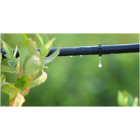 Drip irrigation thumbnail image
