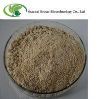 Feed Addictive Bacteria Bacillus Subtilis Probiotics Powder, Probiotics Bacillus Subtilis Forfish Ch thumbnail image