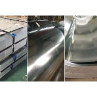 1000m high, 0.75mm thick galvanized coil
