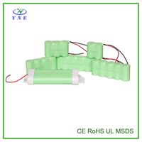 D 2.4V 5000mah Single Ni-MH Rechargeable Battery