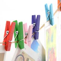 "1"" craft wood spring clothespins with heart"