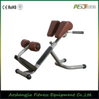 A035 Roman Chair Fitness Gym Equipment thumbnail image