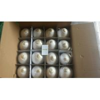 Fresh diamond/ polish coconut (84)1669868008
