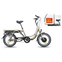 Cargo electric bike(FR-TDN03Z)
