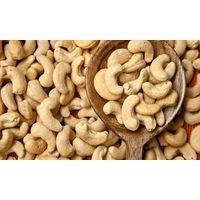 cashew nuts thumbnail image