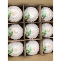 FRESH YOUNG COCONUTS FROM VIETNAM