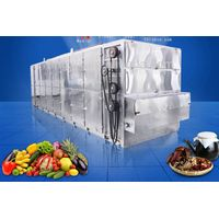 Tomato Belt Dryer process Fruit and Vegetable in Time
