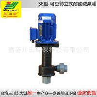 Vertical pump SEP5022/5032/5052 FRPP
