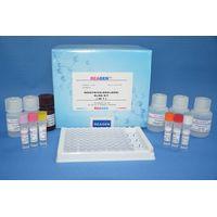 Cyproheptadine ELISA Test Kit