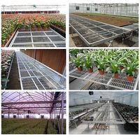 greenhouse movable benches , best quality and competitived price