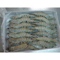 Whole sale Frozen Vannamei shrimp with low price
