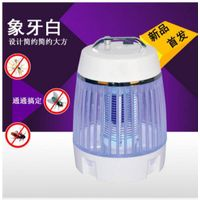 Electric indoor/outdoor Led Mosquito Killers/fly killer lamp Lights