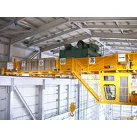 Electronic Intelligent Anti Swing Crane